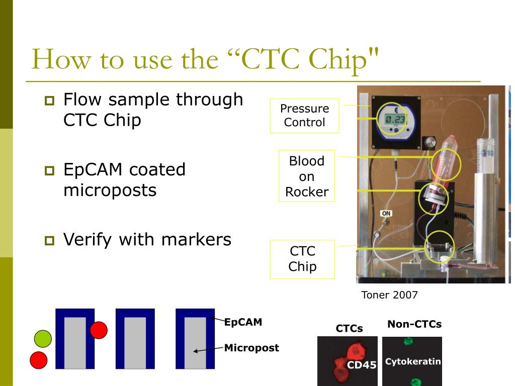 "How to use the ""CTC Chip"""