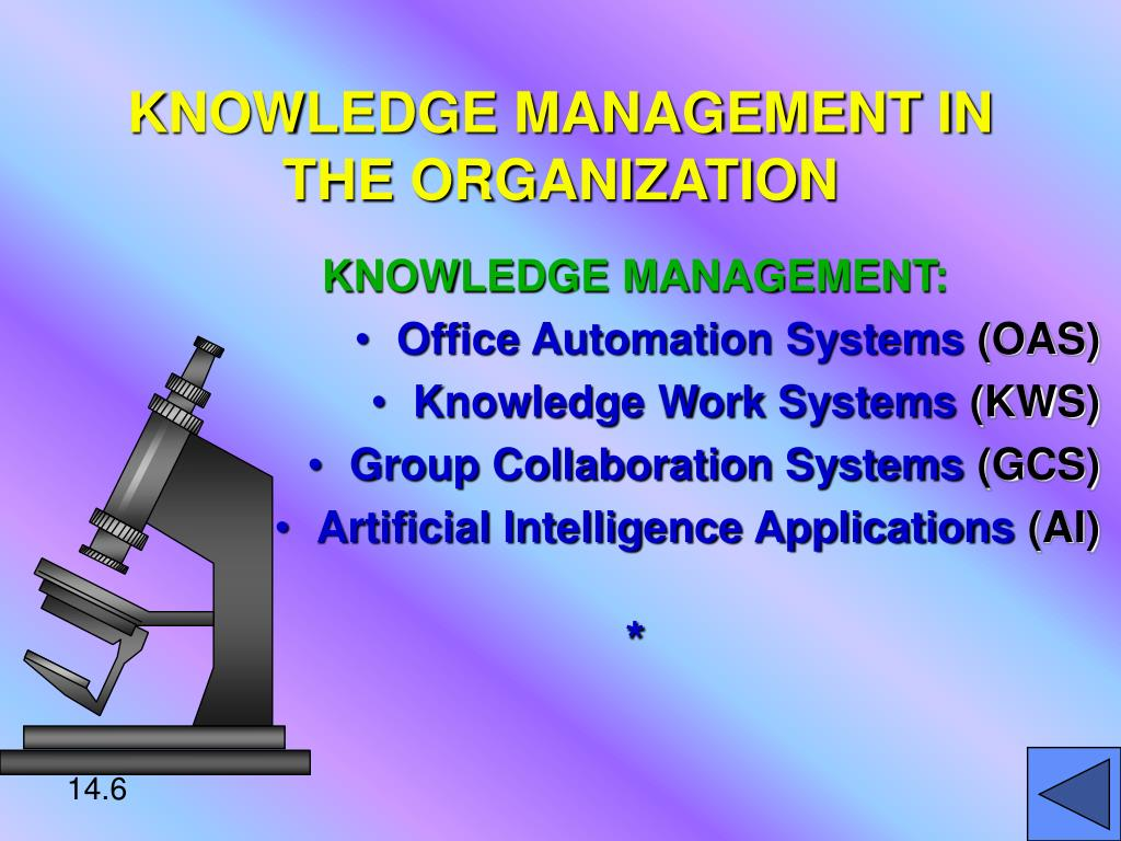 KNOWLEDGE MANAGEMENT IN THE ORGANIZATION