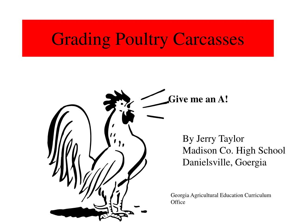 grading poultry carcasses