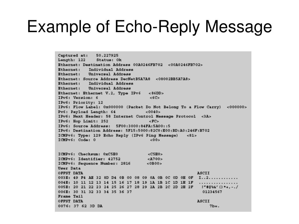 Example of Echo-Reply Message