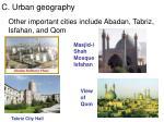 c urban geography3