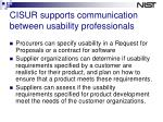 cisur supports communication between usability professionals
