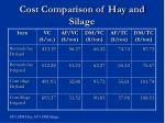 cost comparison of hay and silage