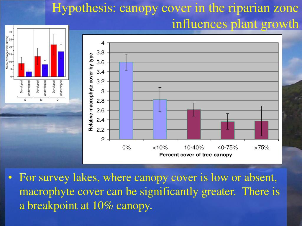 Hypothesis: canopy cover in the riparian zone influences plant growth