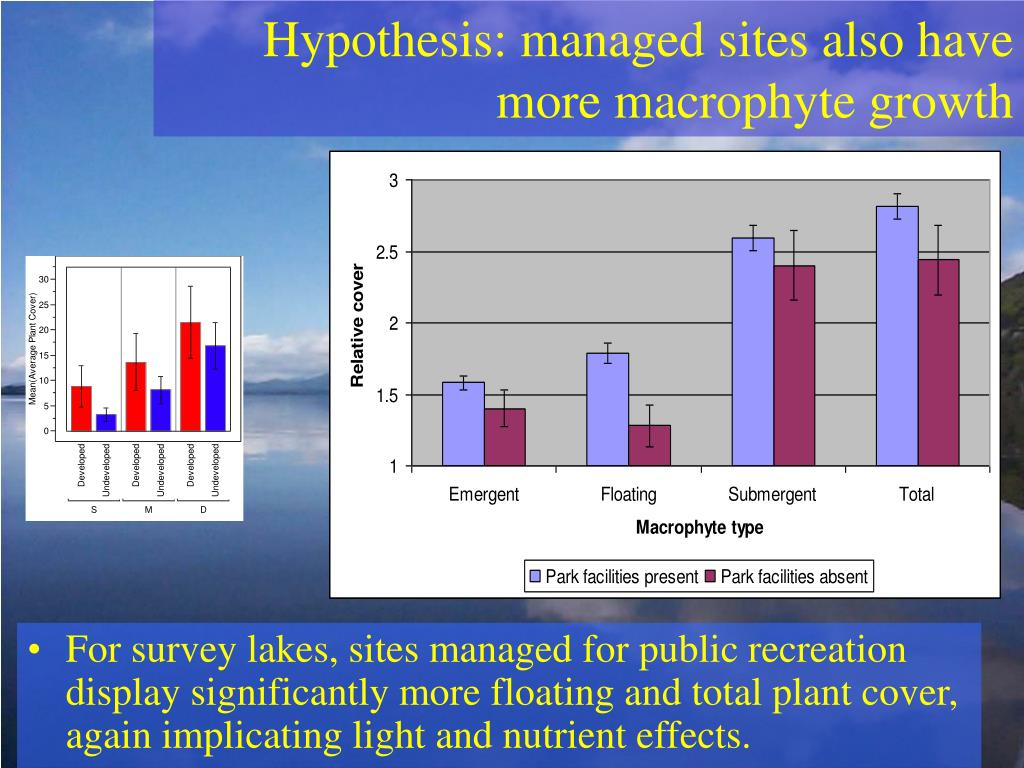 Hypothesis: managed sites also have more macrophyte growth