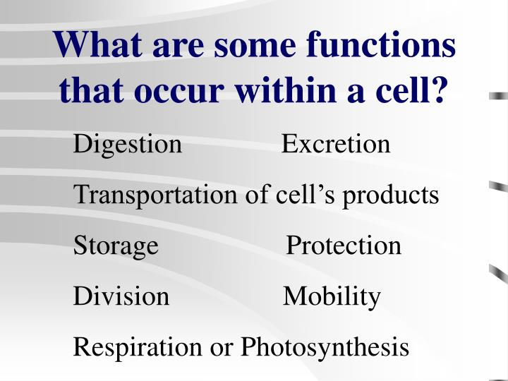 What are some functions that occur within a cell l.jpg