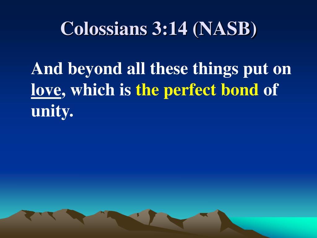 Colossians 3:14 (NASB)
