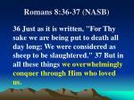 romans 8 36 37 nasb