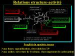 relations structure activit