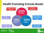 health promoting schools model