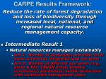 carpe results framework