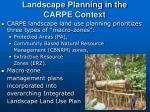 landscape planning in the carpe context13