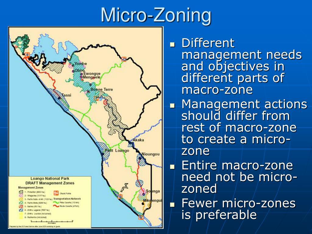 Micro-Zoning