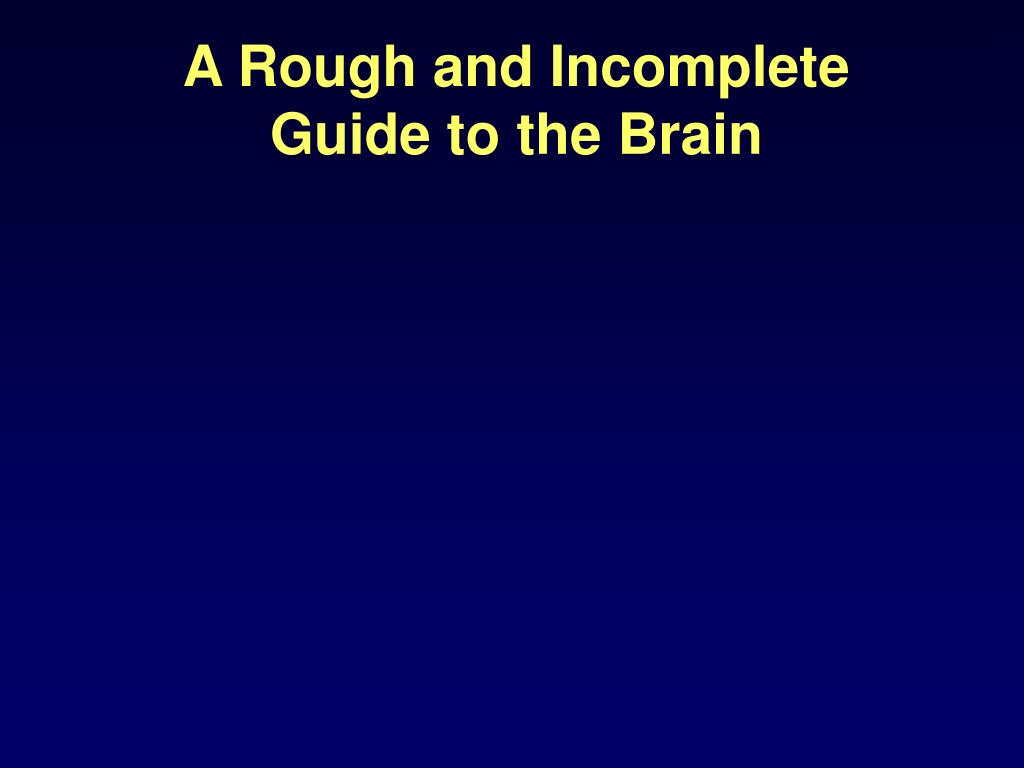 A Rough and Incomplete Guide to the Brain