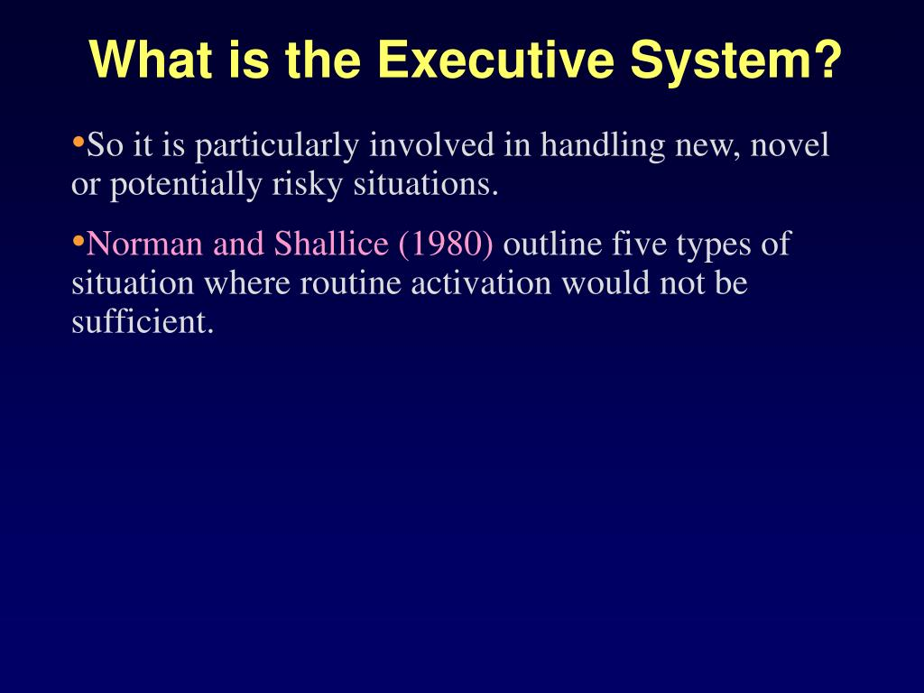What is the Executive System?