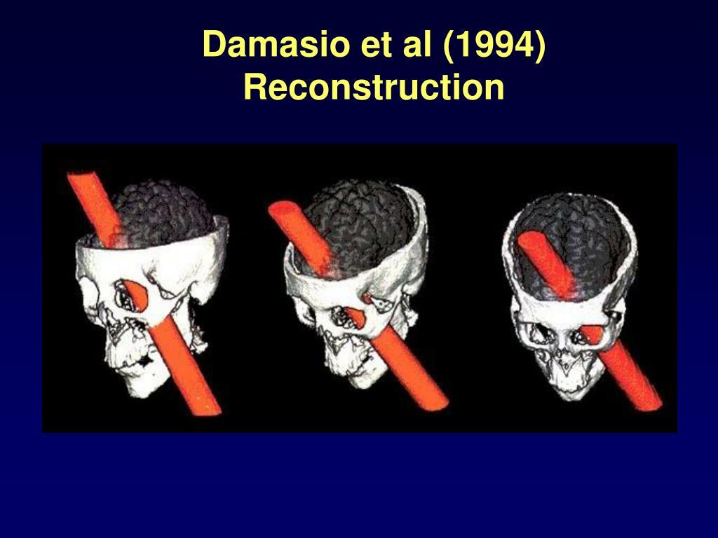 Damasio et al (1994) Reconstruction