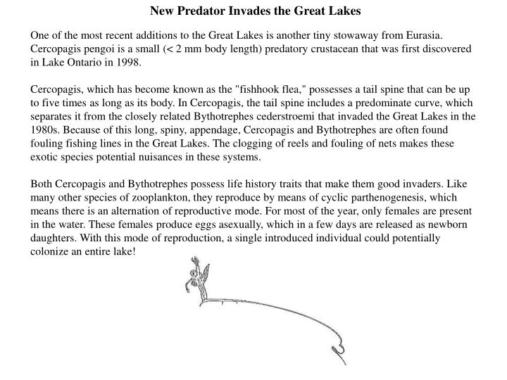 New Predator Invades the Great Lakes