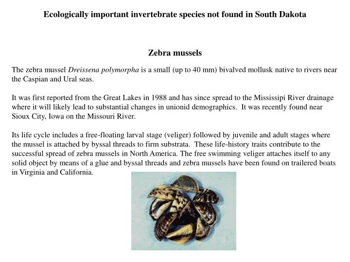 Ecologically important invertebrate species not found in South Dakota