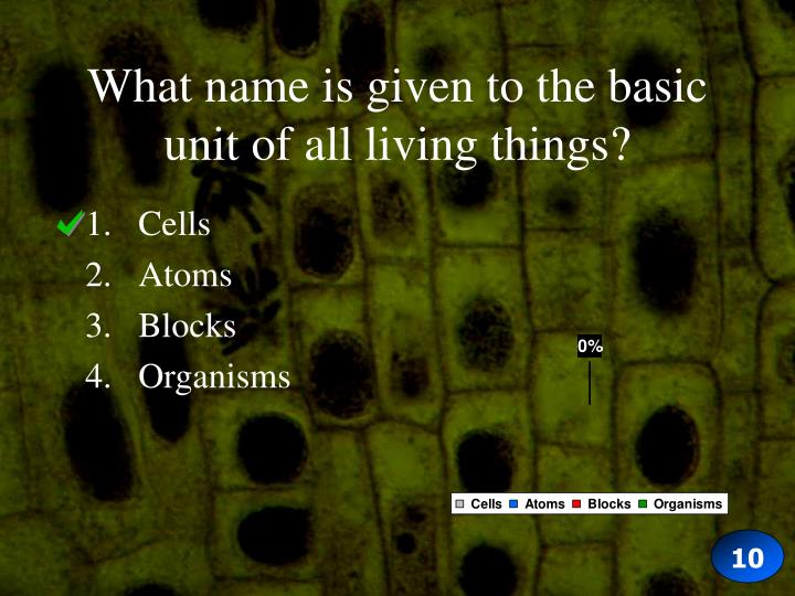 What name is given to the basic unit of all living things