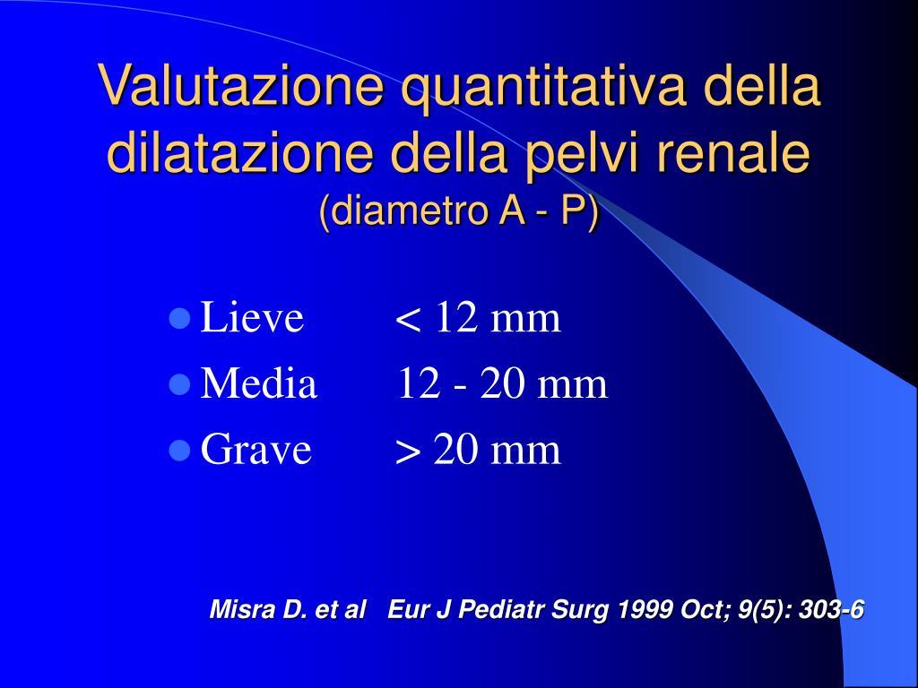 Valutazione quantitativa della dilatazione della pelvi renale