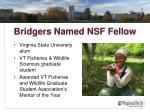bridgers named nsf fellow