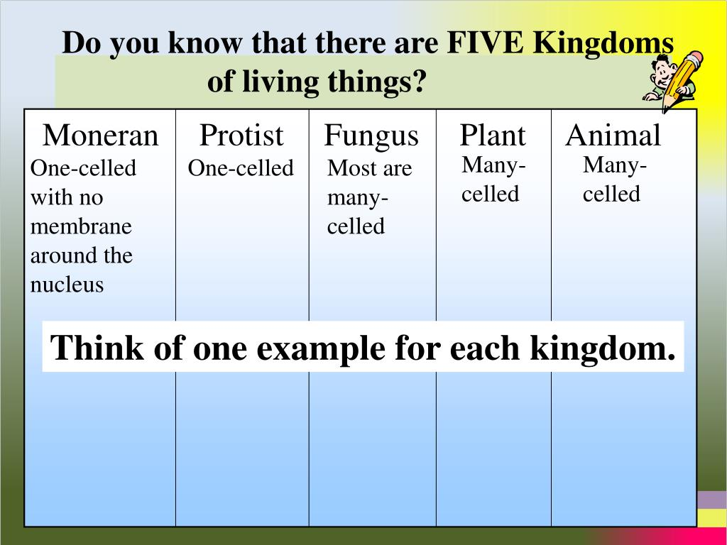 Do you know that there are FIVE Kingdoms