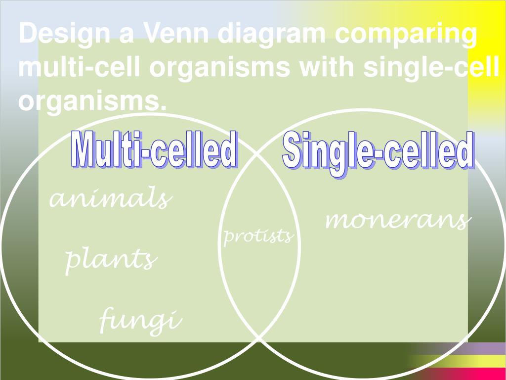 Design a Venn diagram comparing