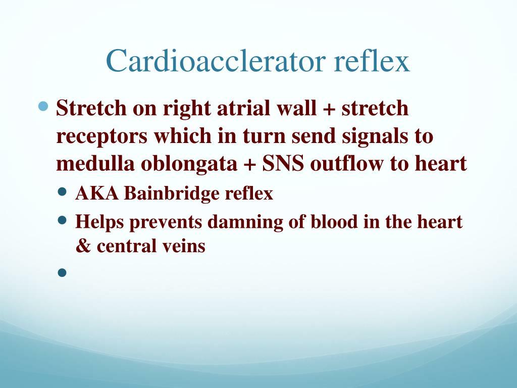 Cardioacclerator reflex