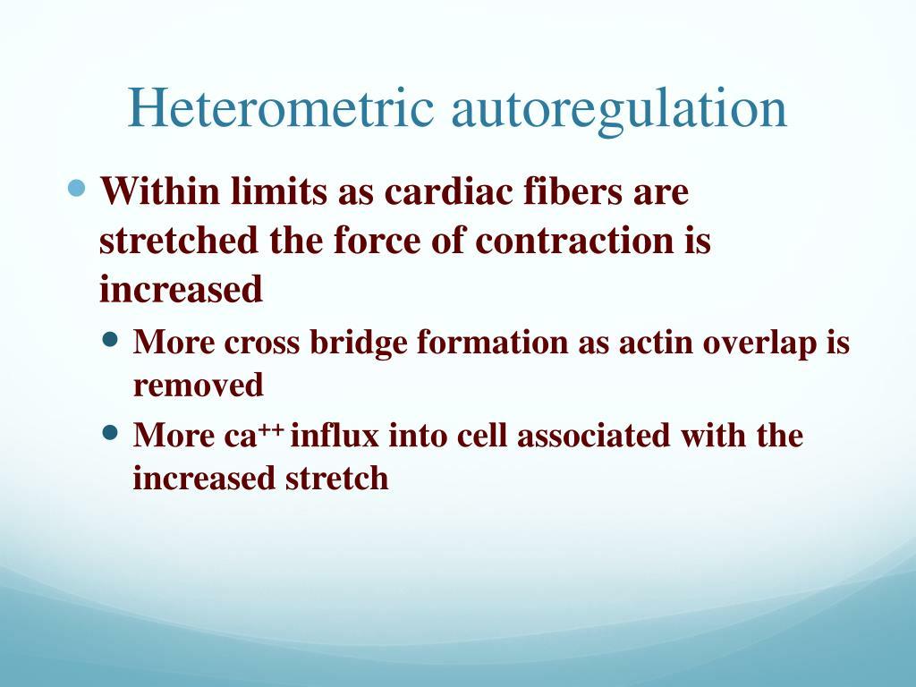 Heterometric autoregulation