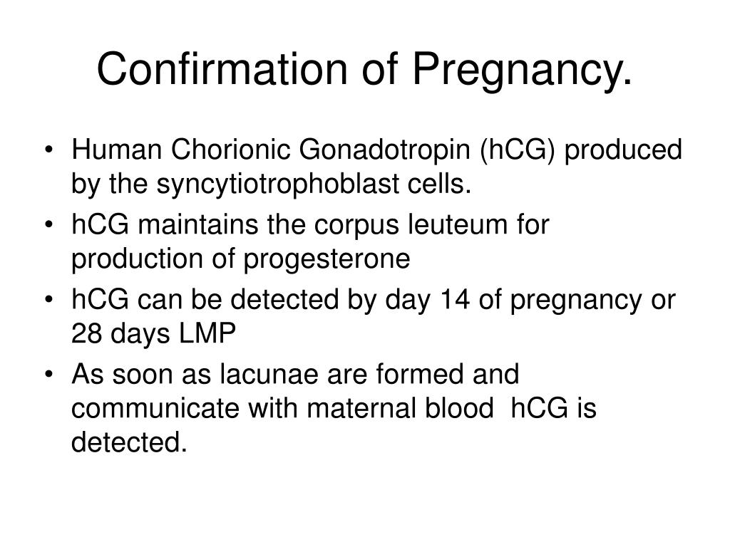 Confirmation of Pregnancy.