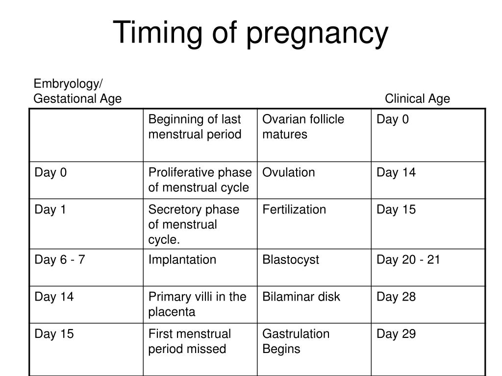 Timing of pregnancy