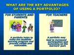 what are the key advantages of using a portfolio