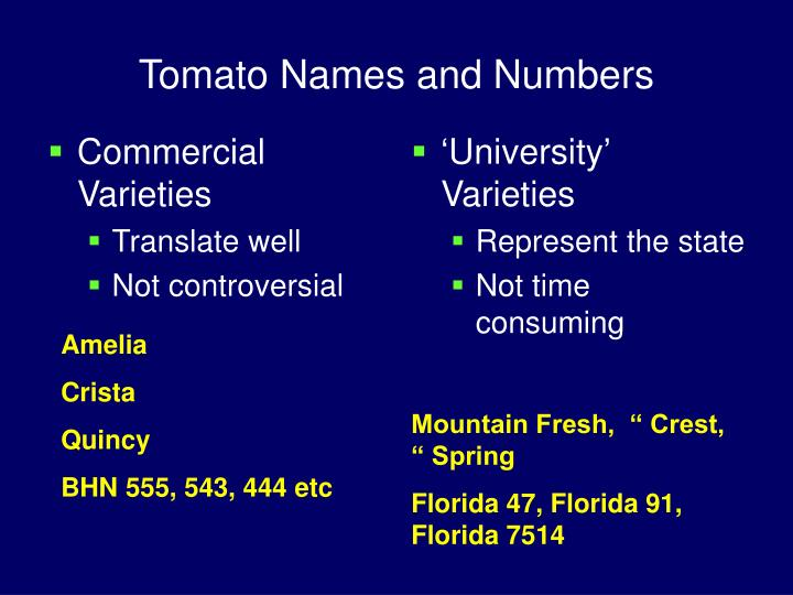 Tomato names and numbers