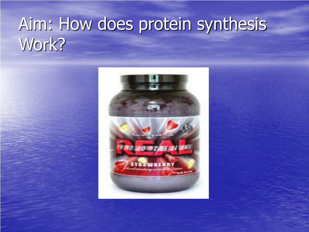 Aim: How does protein synthesis Work?