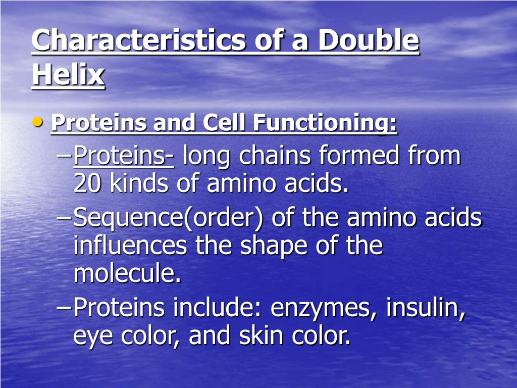Characteristics of a Double Helix