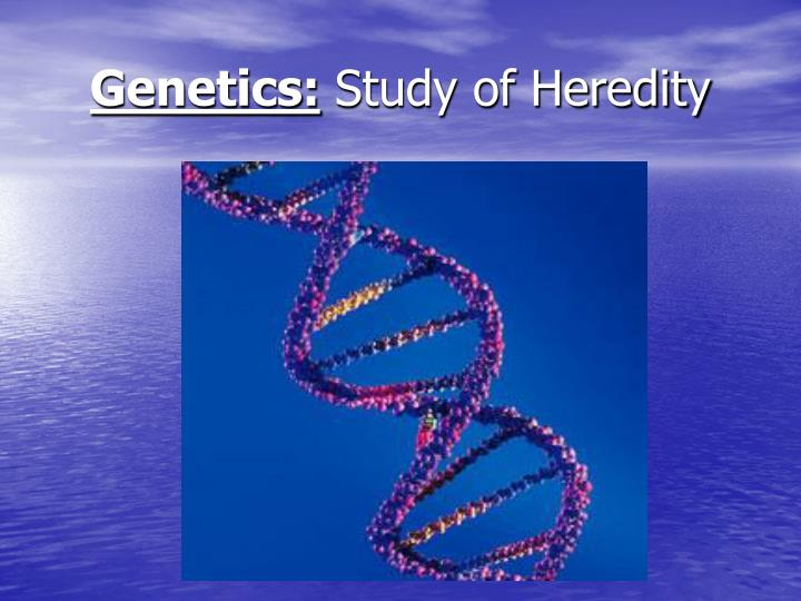 Genetics study of heredity