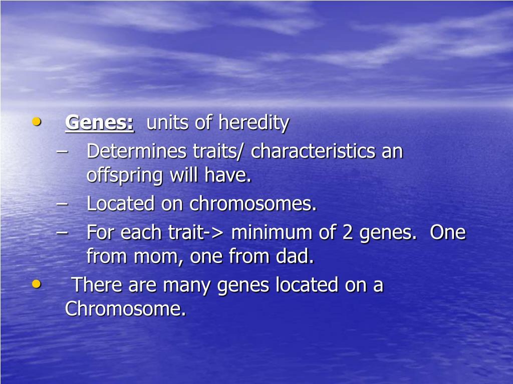 Genes: