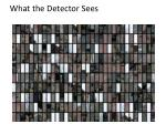 what the detector sees