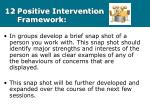 12 positive intervention framework