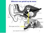 effecten van geluid op de mens11