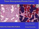 tumor heterogeneity prostate cancer