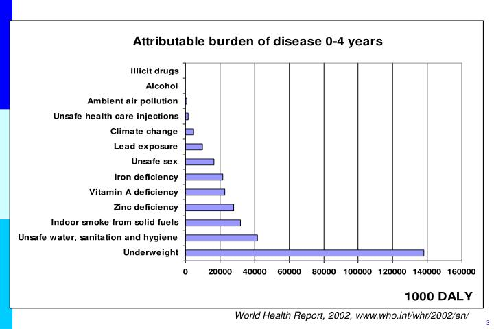 World Health Report, 2002,