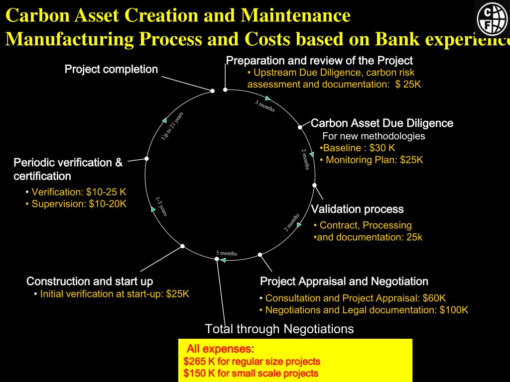 Carbon Asset Creation and Maintenance
