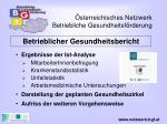 sterreichisches netzwerk betriebliche gesundheitsf rderung13