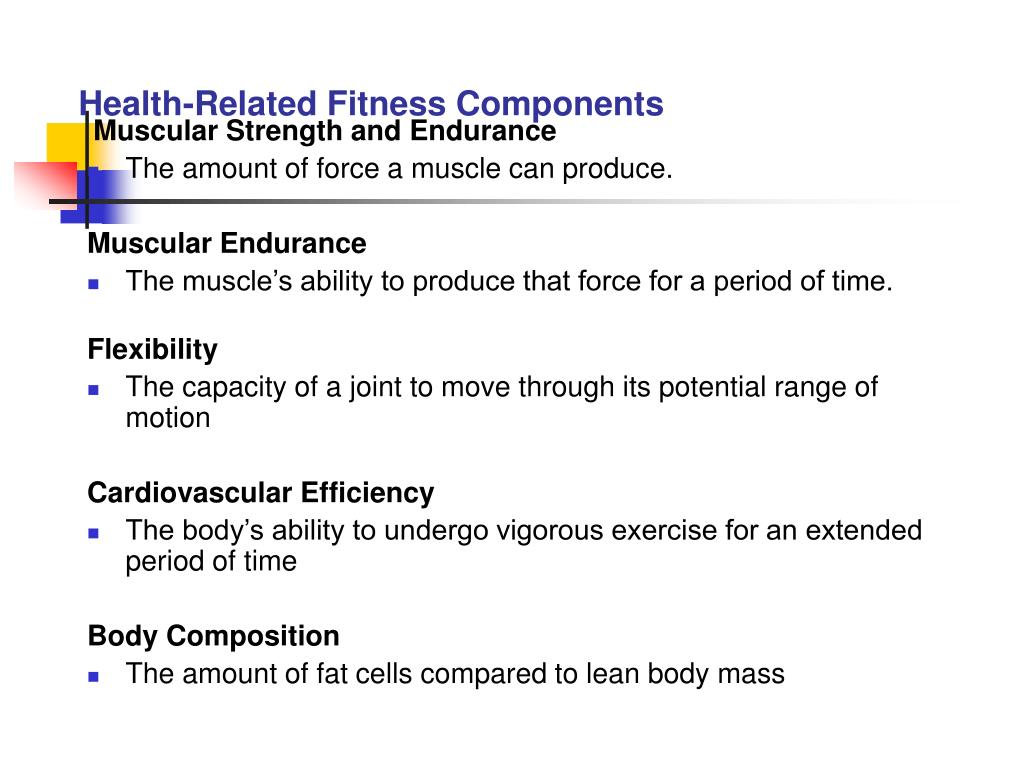 Health‑Related Fitness Components