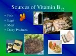 sources of vitamin b 12
