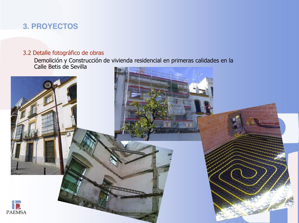3. PROYECTOS