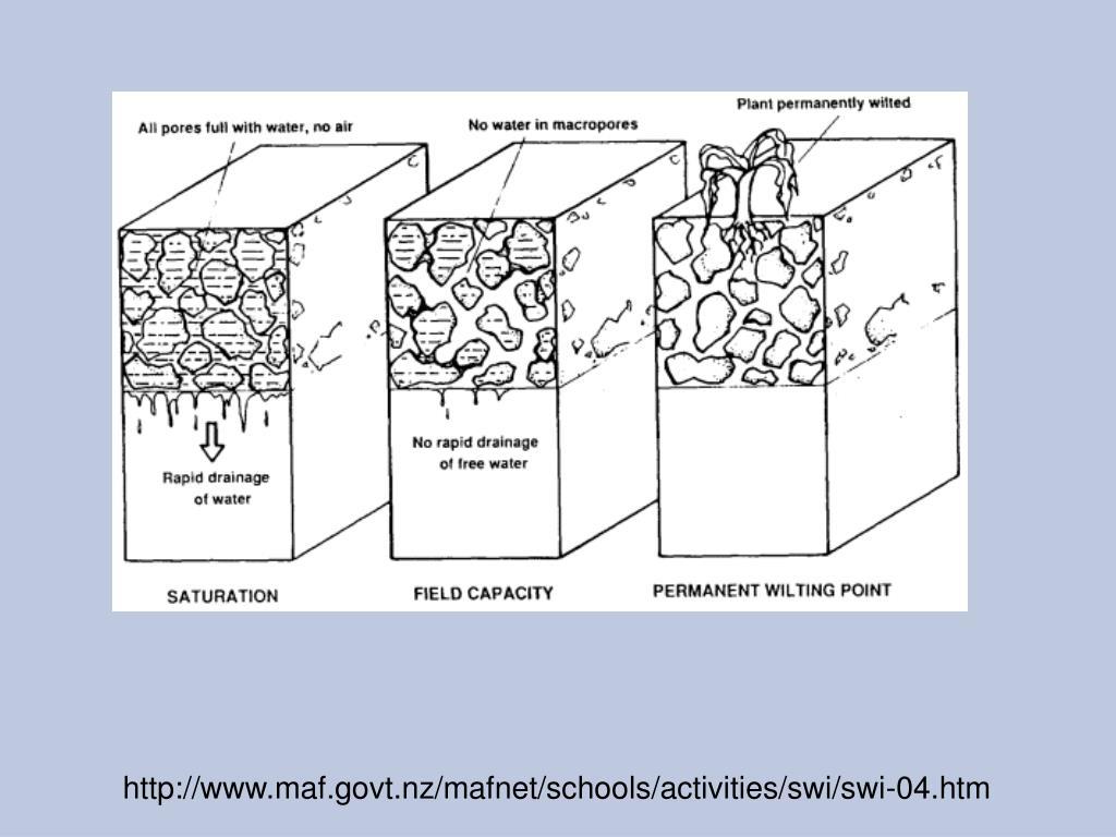 http://www.maf.govt.nz/mafnet/schools/activities/swi/swi-04.htm