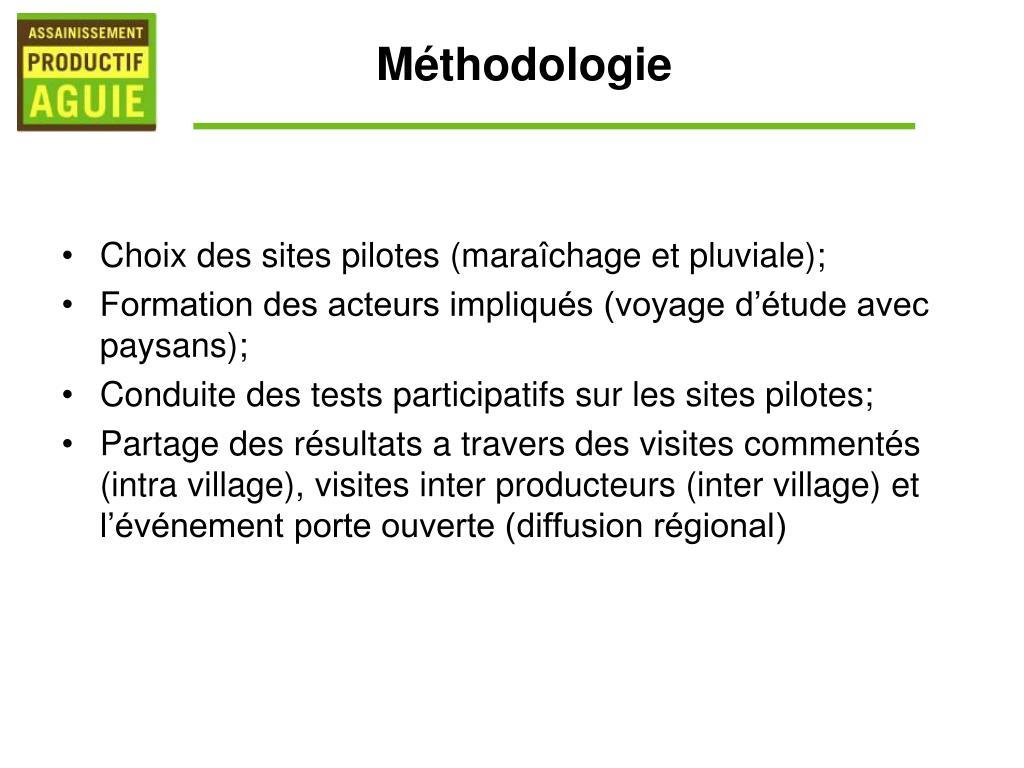 Choix des sites pilotes (maraîchage et pluviale);