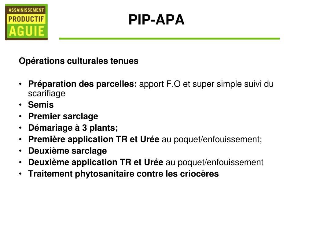 PIP-APA